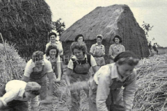1940s-Land-girls-and-haystacks-2
