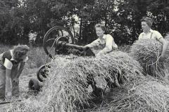 1940s-Land-girls-harveting-2