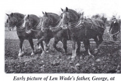 photo of team of 4 horses ploughing
